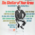 The Shelter Of Your Arms LP