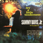 Try A Little Tenderness LP